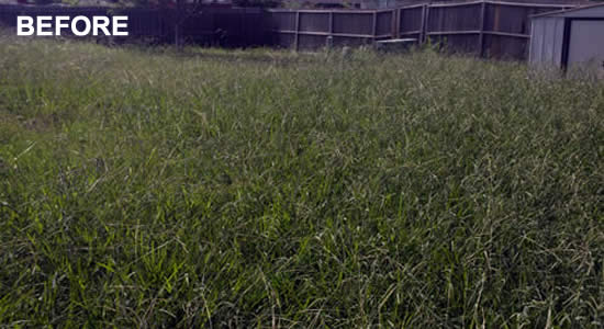 Professional Lawn Mowing in Copperas Cove Texas
