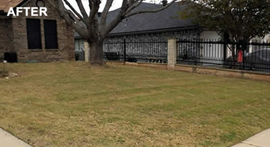 Hire a Copperas Cove Lawn Mowing Company in Texas